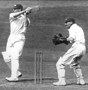 cricket espinillera